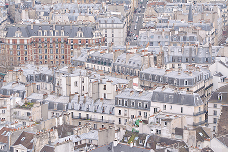 Notre Dame rooftops