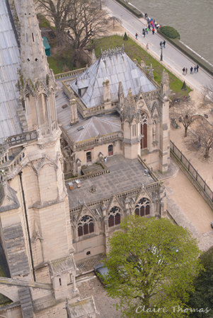 Notre Dame tower view