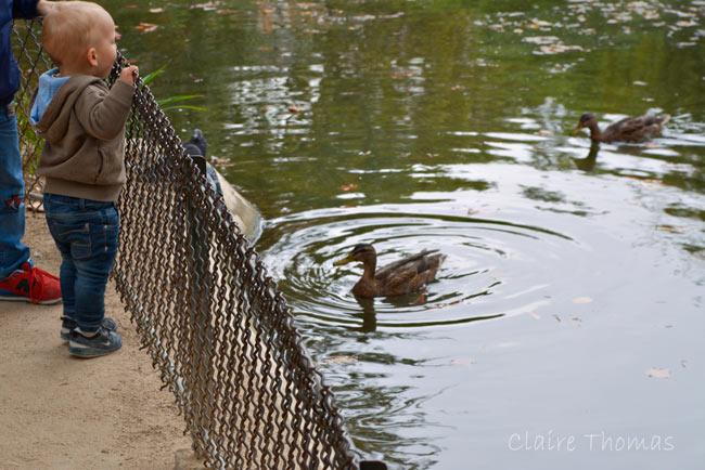 Paris Parc Monceau child feeding duck