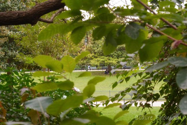 Paris Parc Monceau grass